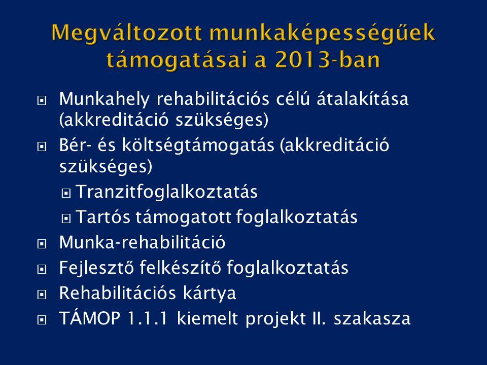 Megváltozott munkaképességűek támogatásai a 2013-ban