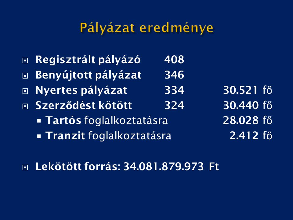 Pályázat eredménye Regisztrált pályázó 408 Benyújtott pályázat 346