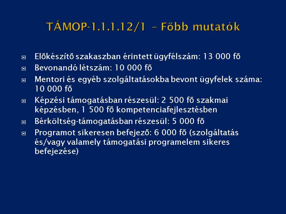 TÁMOP-1.1.1.12/1 – Főbb mutatók Előkészítő szakaszban érintett ügyfélszám: 13 000 fő. Bevonandó létszám: 10 000 fő.