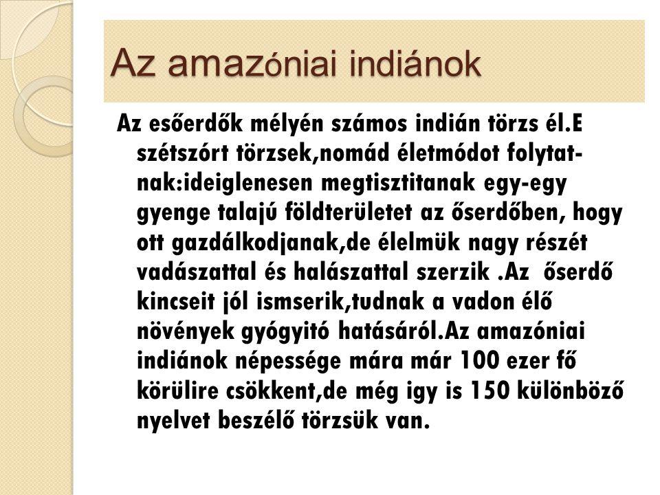 Az amazóniai indiánok
