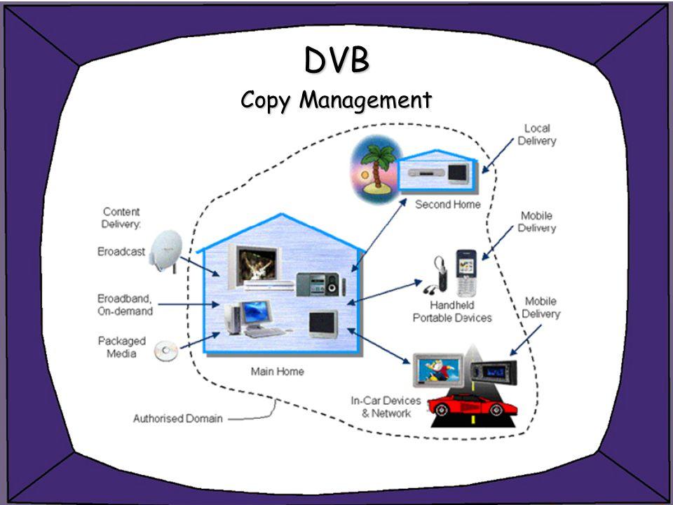 DVB Copy Management
