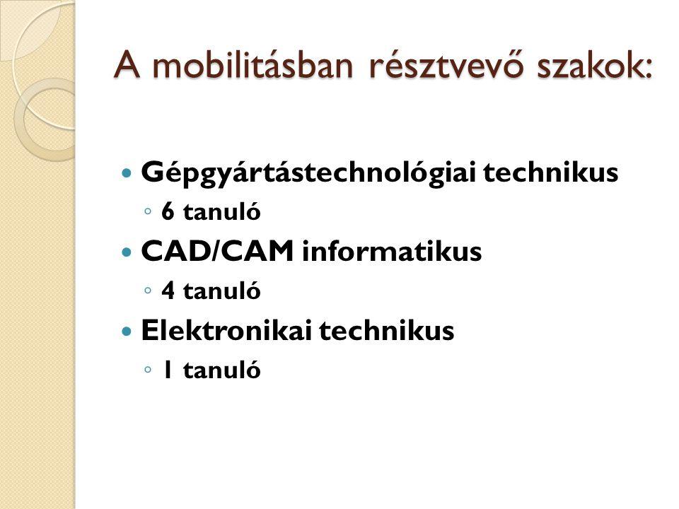 A mobilitásban résztvevő szakok: