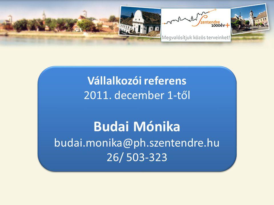 Budai Mónika Vállalkozói referens 2011. december 1-től