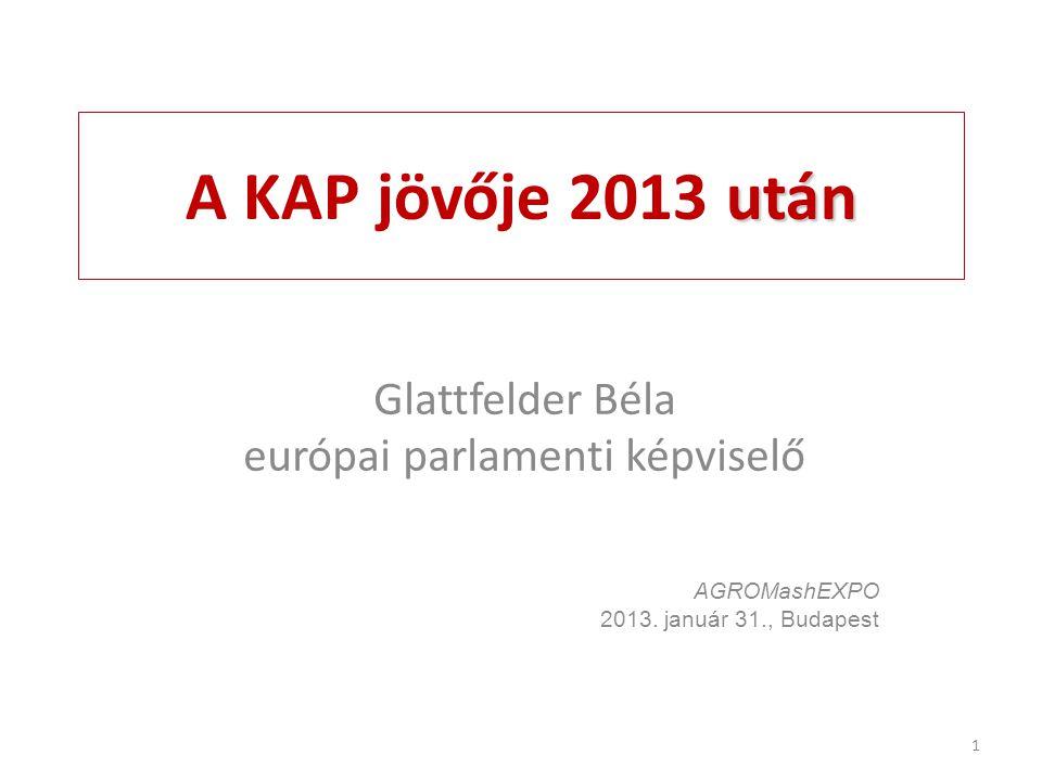 európai parlamenti képviselő