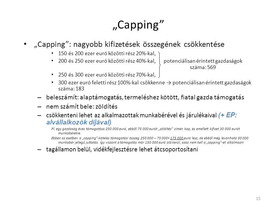 """""""Capping """"Capping : nagyobb kifizetések összegének csökkentése"""