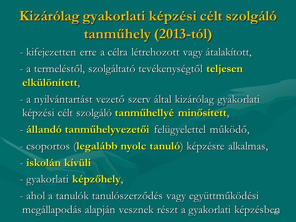 Kizárólag gyakorlati képzési célt szolgáló tanműhely (2013-tól)