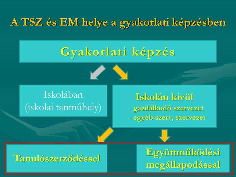 A TSZ és EM helye a gyakorlati képzésben