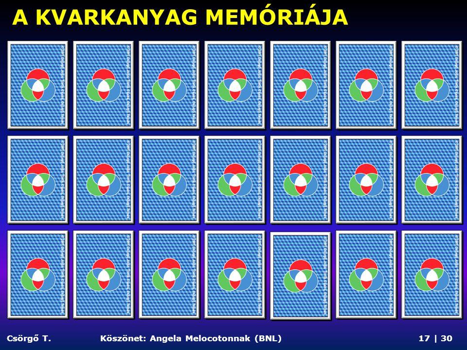 A KVARKANYAG MEMÓRIÁJA