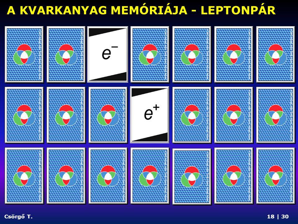 A KVARKANYAG MEMÓRIÁJA - LEPTONPÁR