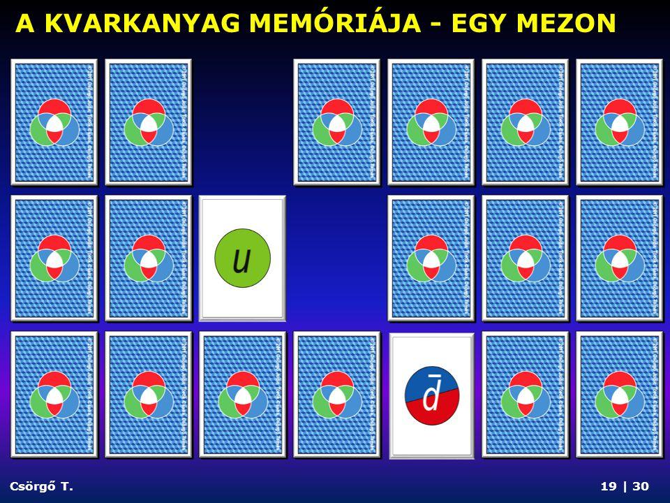 A KVARKANYAG MEMÓRIÁJA - EGY MEZON