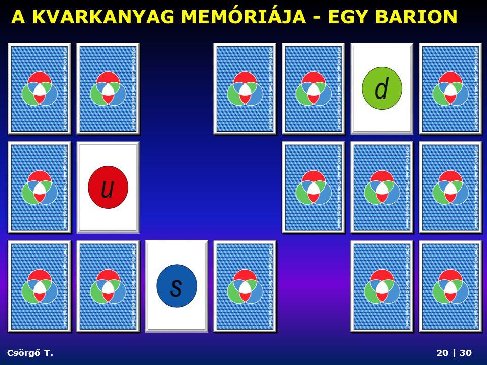 A KVARKANYAG MEMÓRIÁJA - EGY BARION