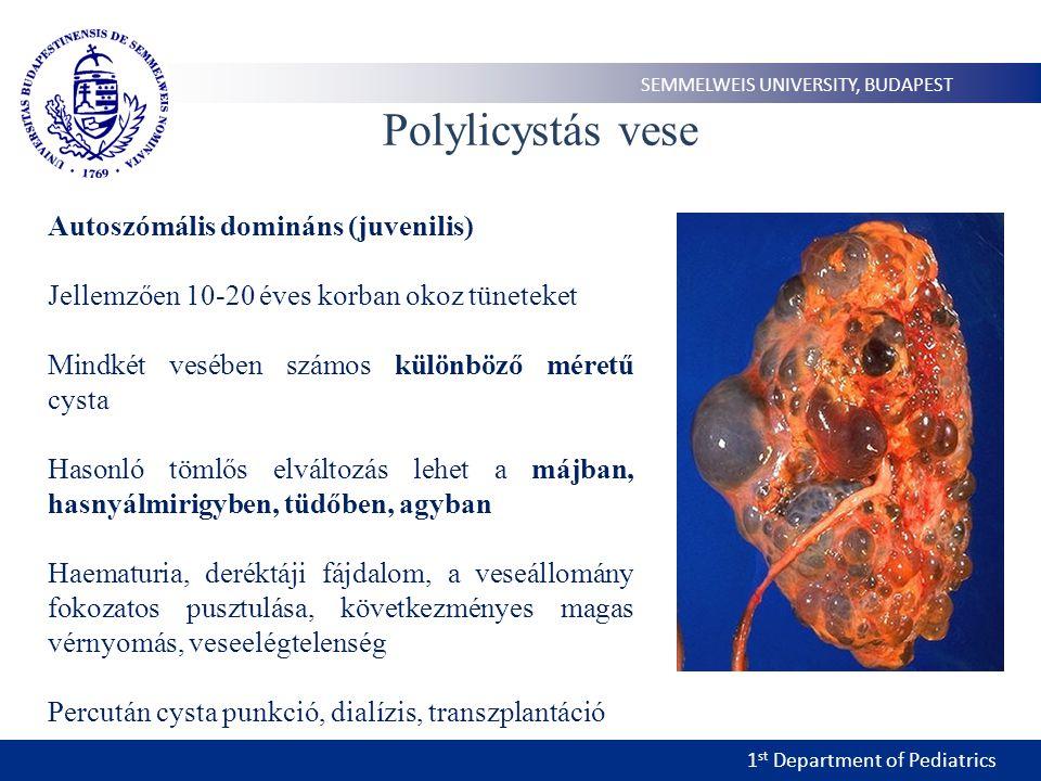 Polylicystás vese Autoszómális domináns (juvenilis)