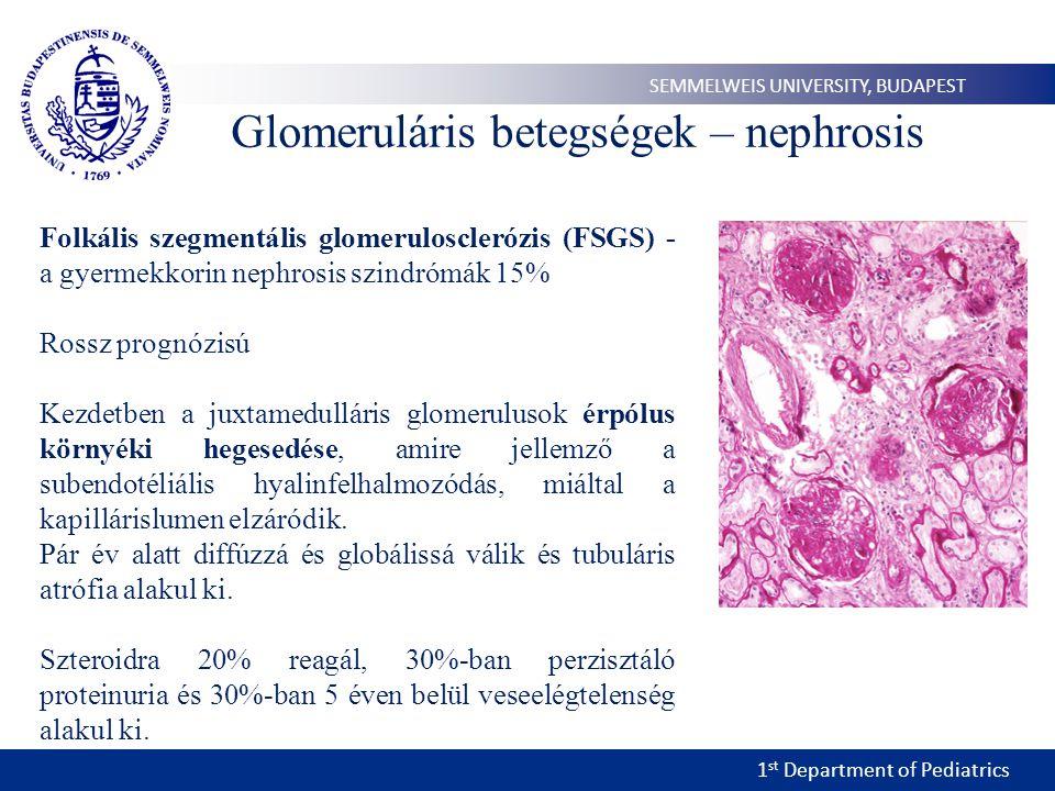 Glomeruláris betegségek – nephrosis