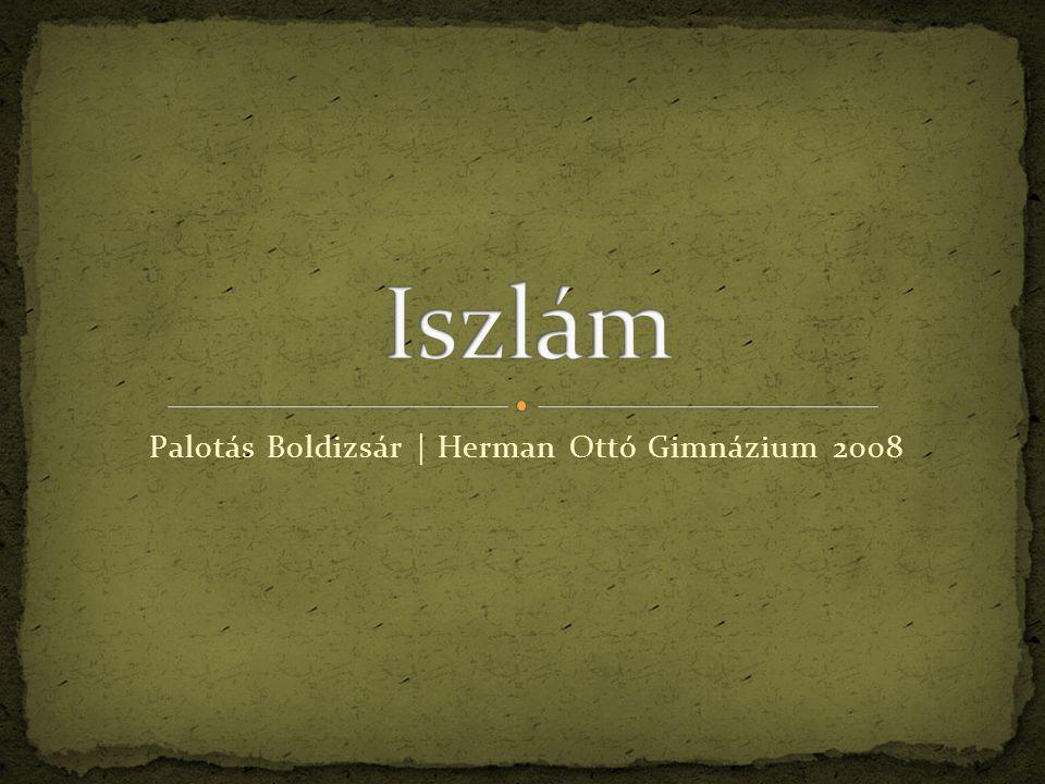 Palotás Boldizsár | Herman Ottó Gimnázium 2008