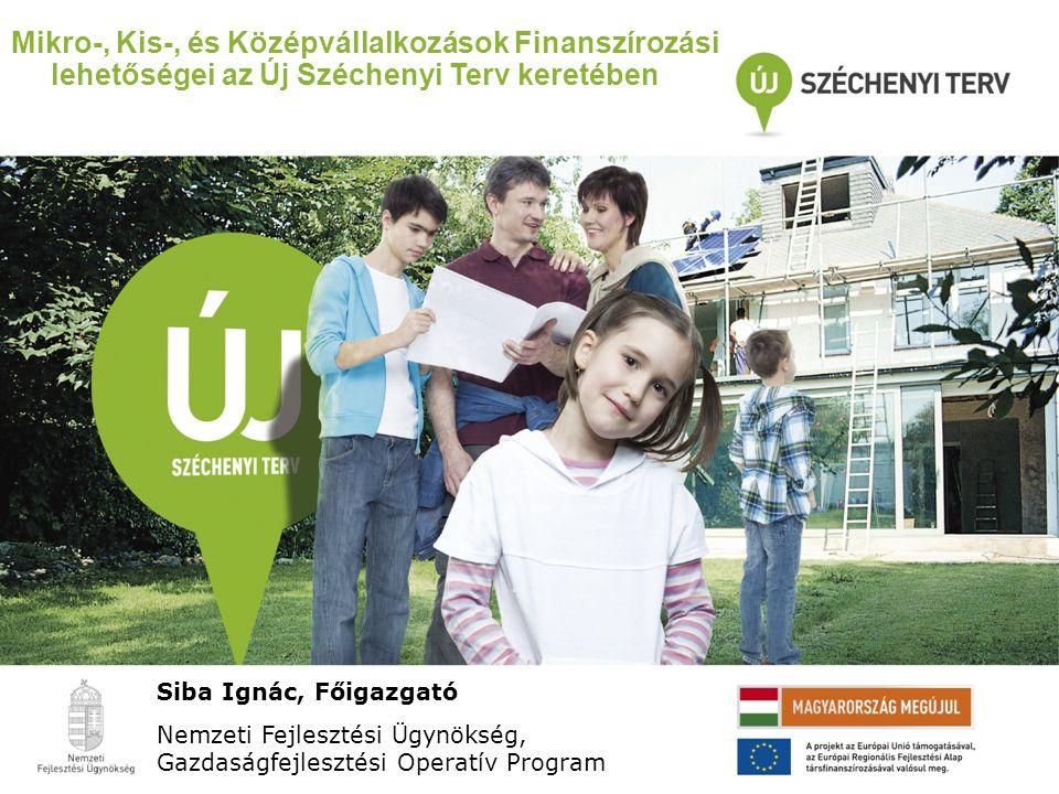 Mikro-, Kis-, és Középvállalkozások Finanszírozási lehetőségei az Új Széchenyi Terv keretében