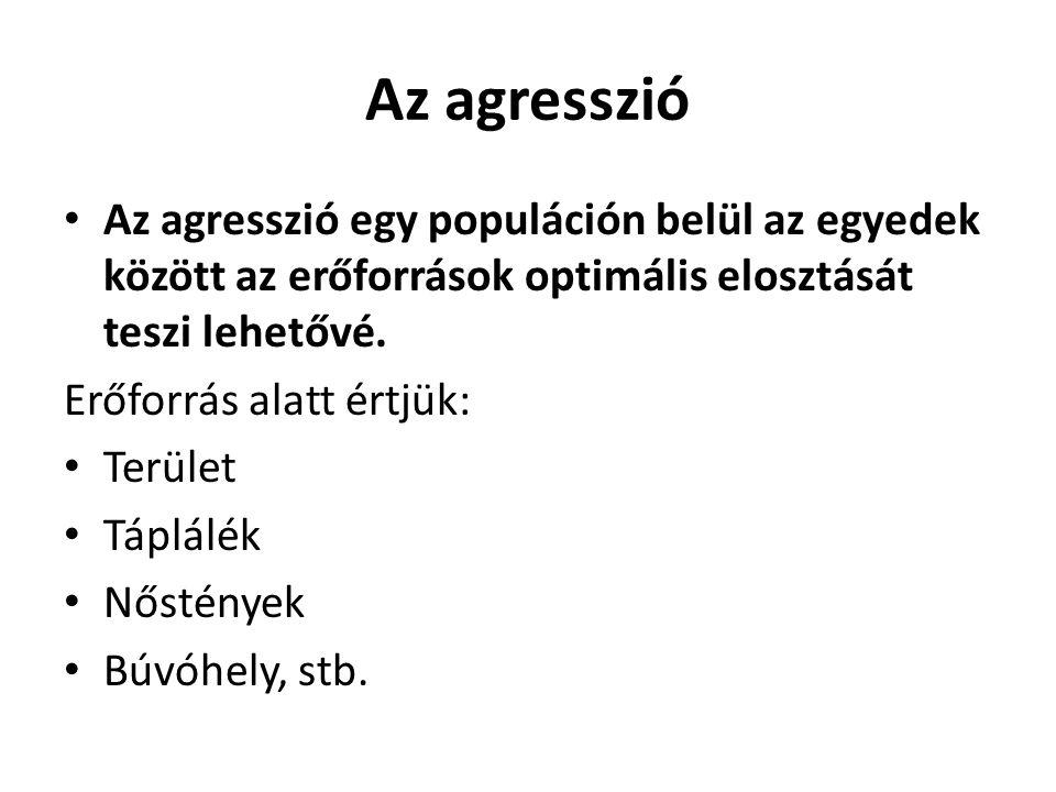 Az agresszió Az agresszió egy populáción belül az egyedek között az erőforrások optimális elosztását teszi lehetővé.