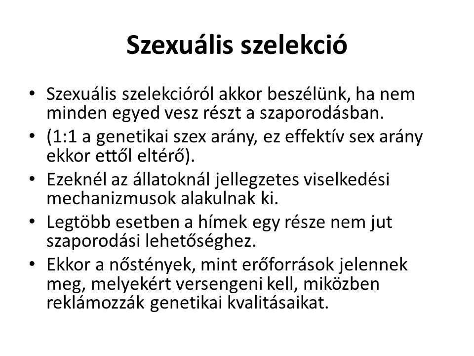 Szexuális szelekció Szexuális szelekcióról akkor beszélünk, ha nem minden egyed vesz részt a szaporodásban.