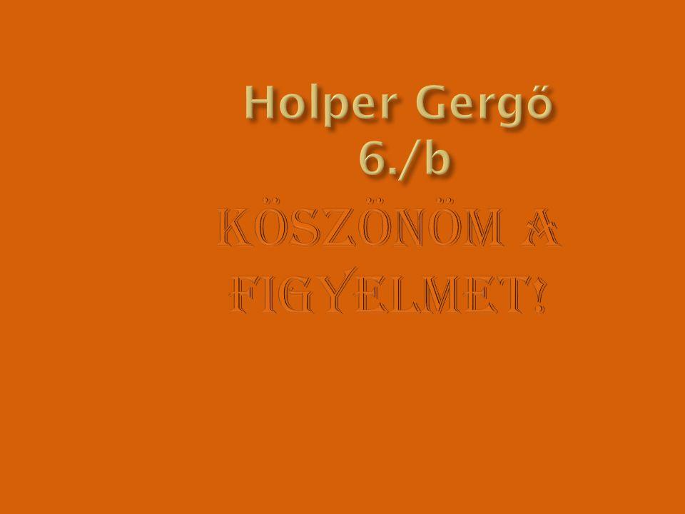 Holper Gergő 6./b Köszönöm a figyelmet!