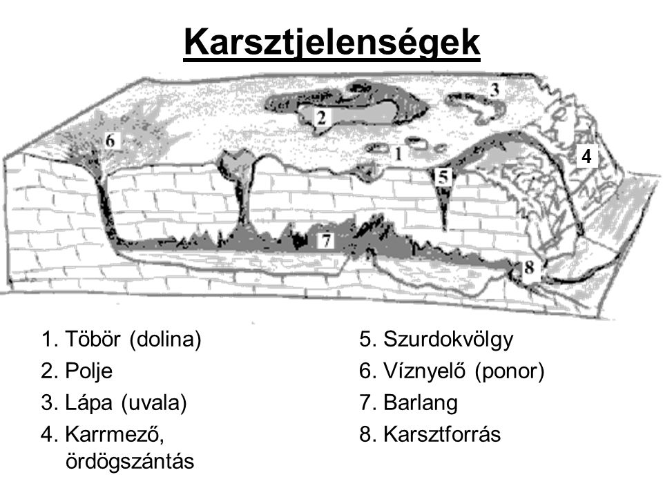 Karsztjelenségek 1. Töbör (dolina) 2. Polje 3. Lápa (uvala)