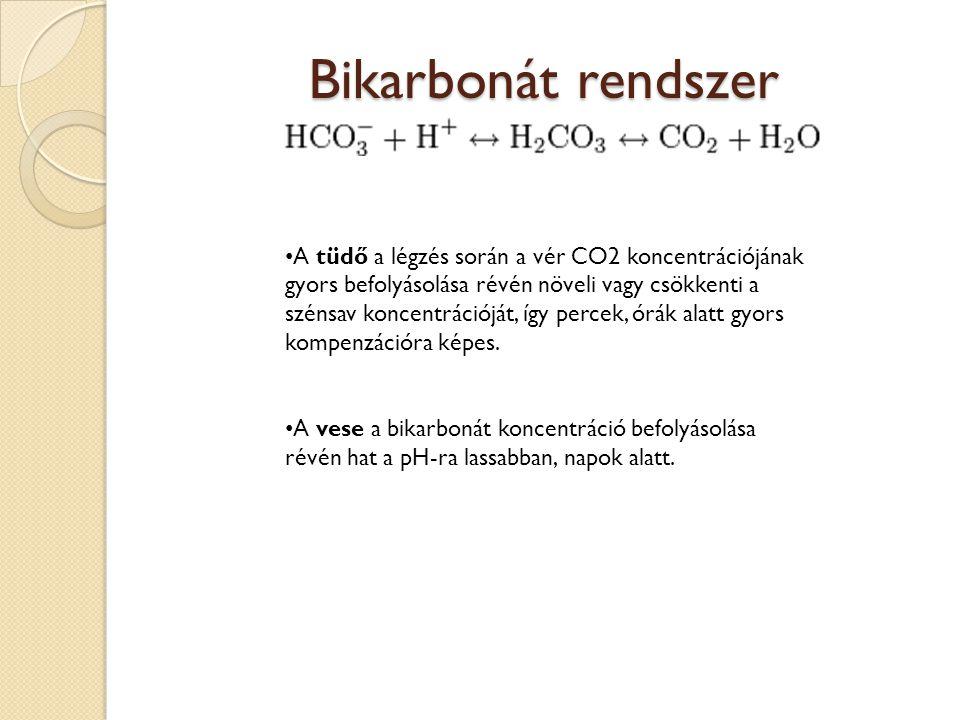 Bikarbonát rendszer