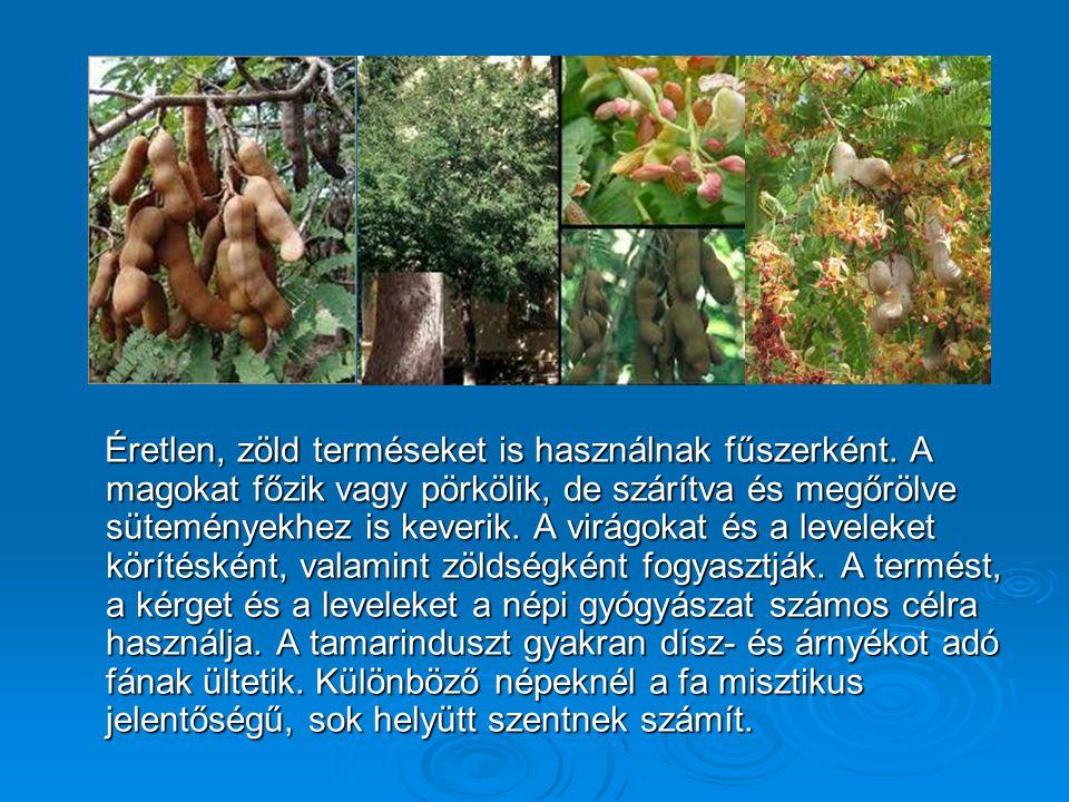 Éretlen, zöld terméseket is használnak fűszerként