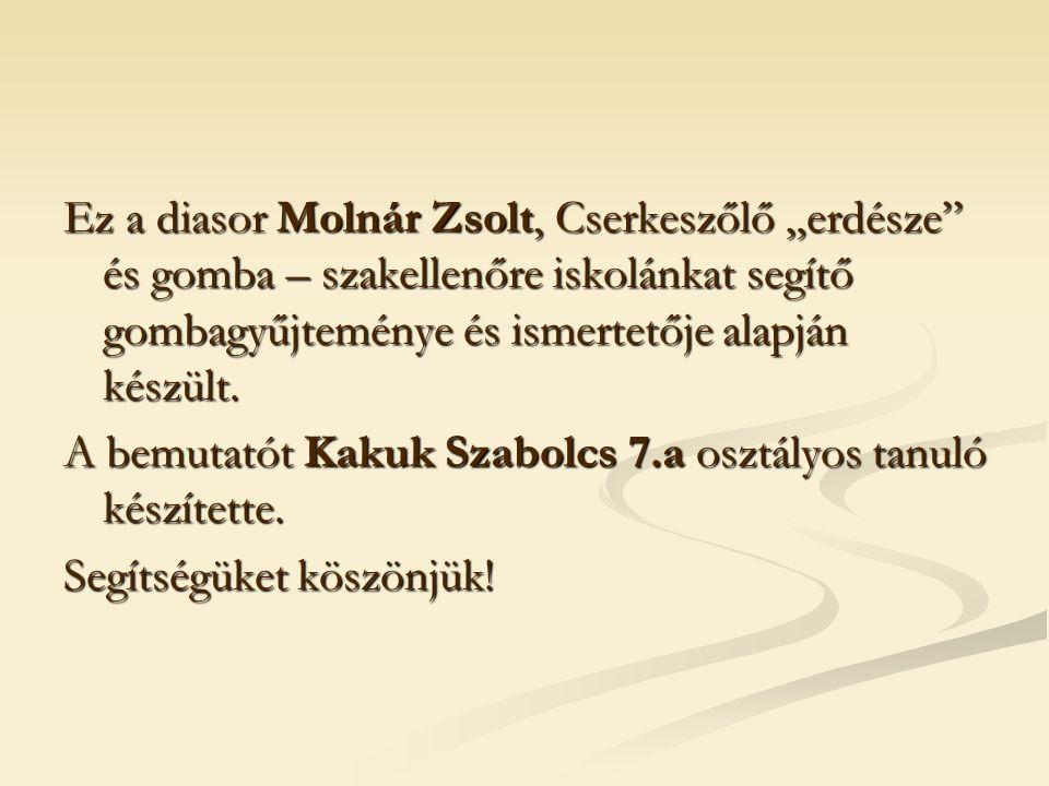 """Ez a diasor Molnár Zsolt, Cserkeszőlő """"erdésze és gomba – szakellenőre iskolánkat segítő gombagyűjteménye és ismertetője alapján készült."""