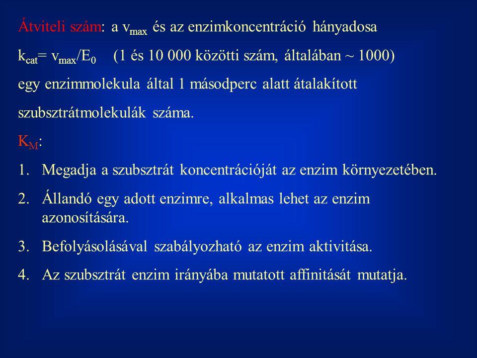 Átviteli szám: a vmax és az enzimkoncentráció hányadosa
