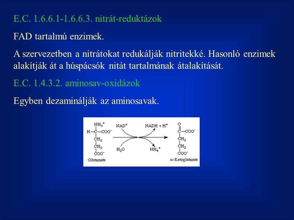 E.C. 1.6.6.1-1.6.6.3. nitrát-reduktázok