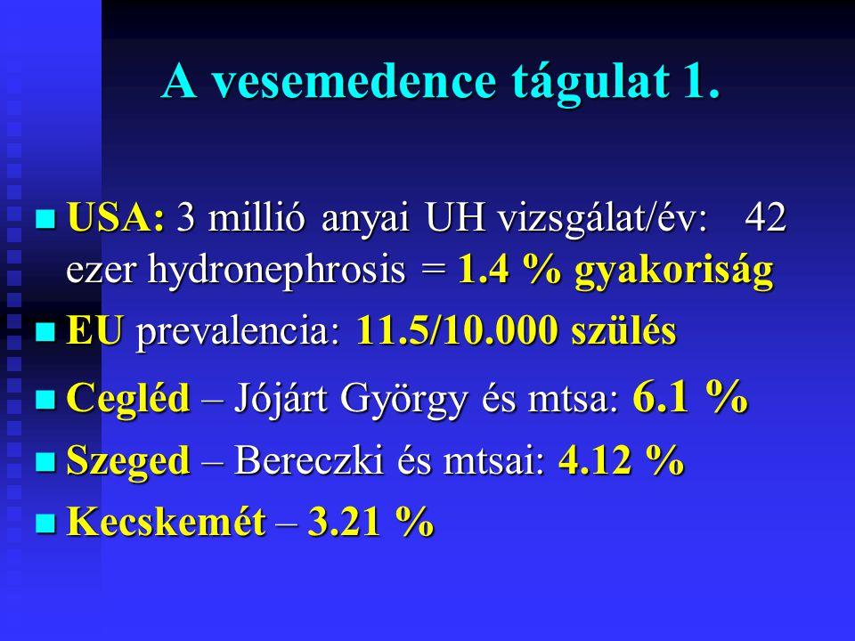 A vesemedence tágulat 1. USA: 3 millió anyai UH vizsgálat/év: 42 ezer hydronephrosis = 1.4 % gyakoriság.