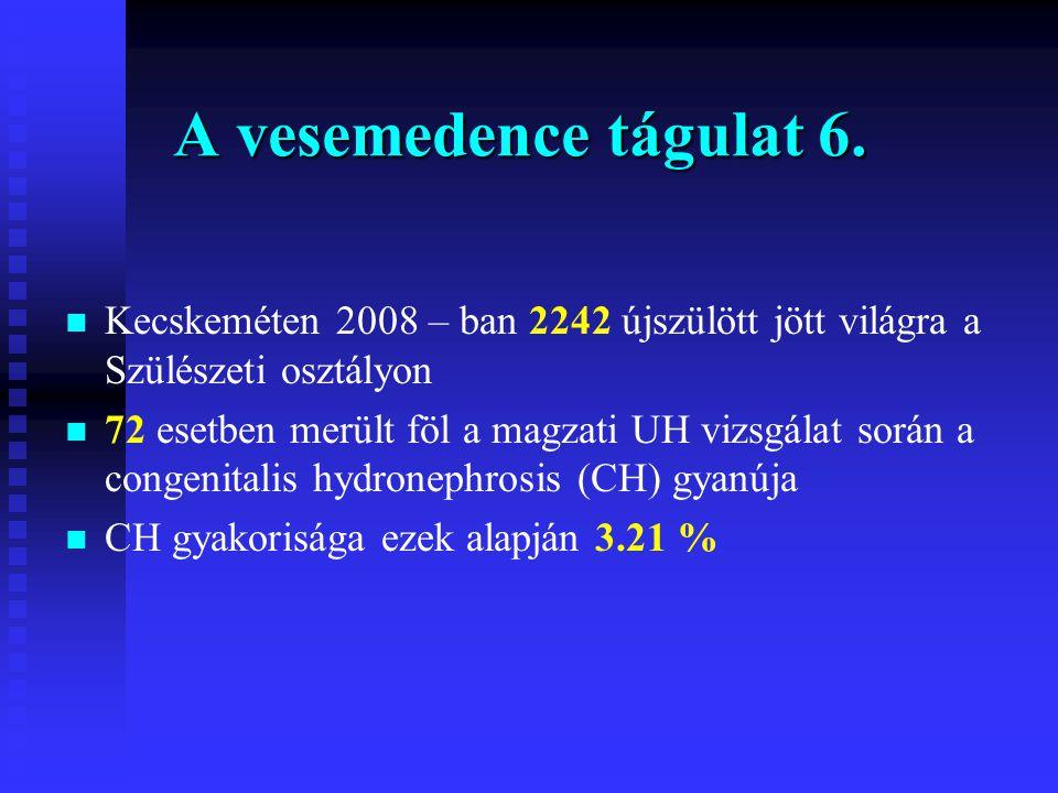 A vesemedence tágulat 6. Kecskeméten 2008 – ban 2242 újszülött jött világra a Szülészeti osztályon.
