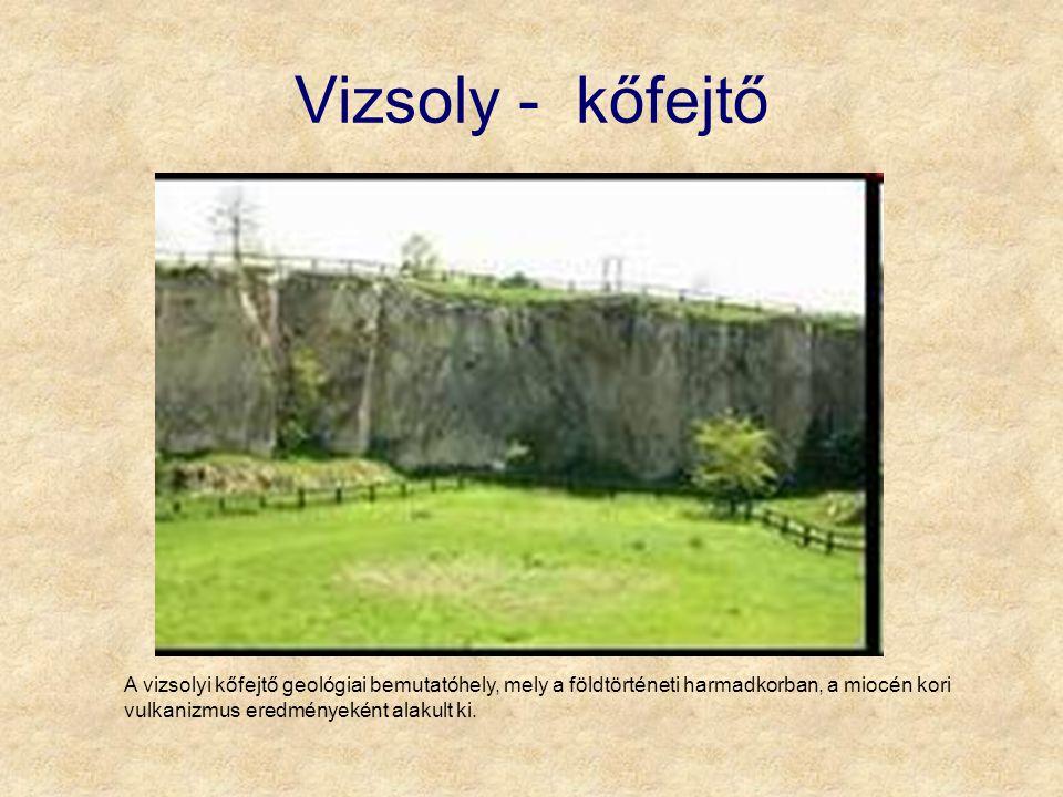 Vizsoly - kőfejtő A vizsolyi kőfejtő geológiai bemutatóhely, mely a földtörténeti harmadkorban, a miocén kori vulkanizmus eredményeként alakult ki.
