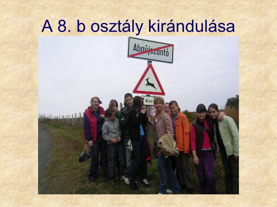 A 8. b osztály kirándulása