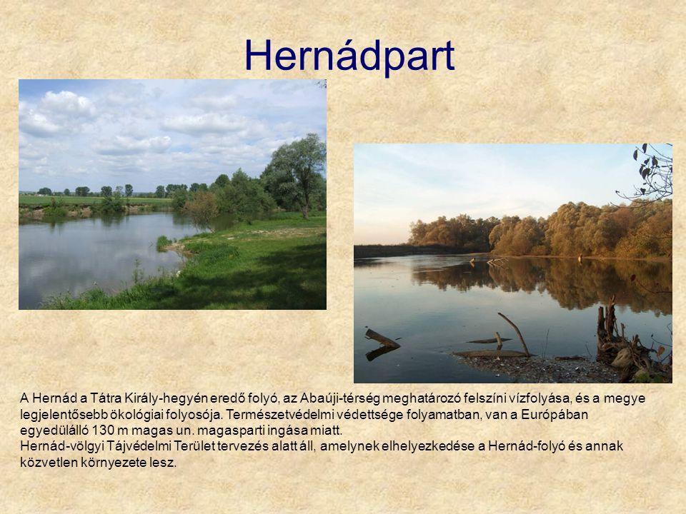 Hernádpart