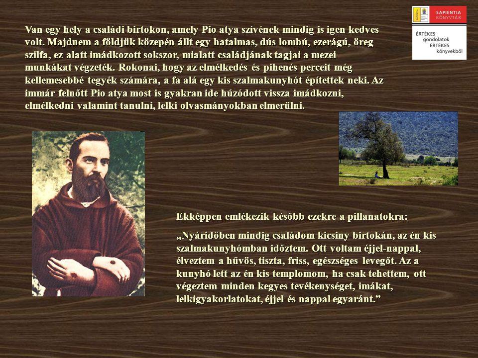 Van egy hely a családi birtokon, amely Pio atya szívének mindig is igen kedves volt. Majdnem a földjük közepén állt egy hatalmas, dús lombú, ezerágú, öreg szilfa, ez alatt imádkozott sokszor, mialatt családjának tagjai a mezei munkákat végzeték. Rokonai, hogy az elmélkedés és pihenés perceit még kellemesebbé tegyék számára, a fa alá egy kis szalmakunyhót építettek neki. Az immár felnőtt Pio atya most is gyakran ide húzódott vissza imádkozni, elmélkedni valamint tanulni, lelki olvasmányokban elmerülni.