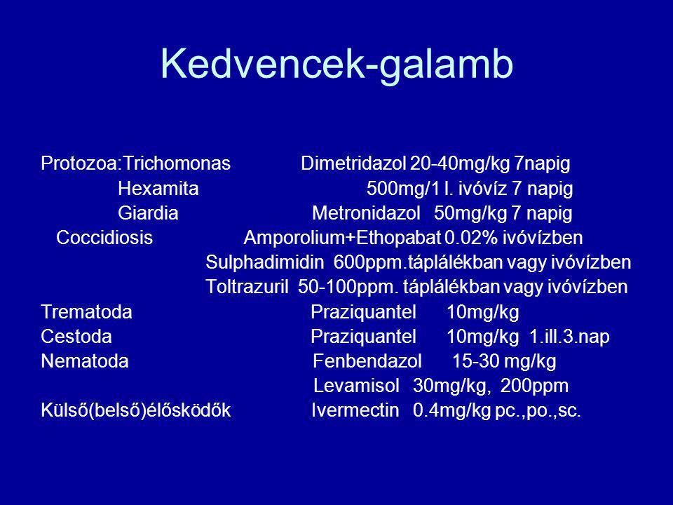 Kedvencek-galamb Protozoa:Trichomonas Dimetridazol 20-40mg/kg 7napig