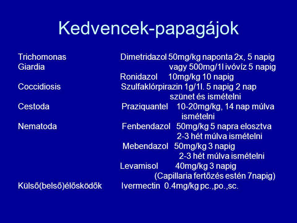 Kedvencek-papagájok Trichomonas Dimetridazol 50mg/kg naponta 2x, 5 napig.