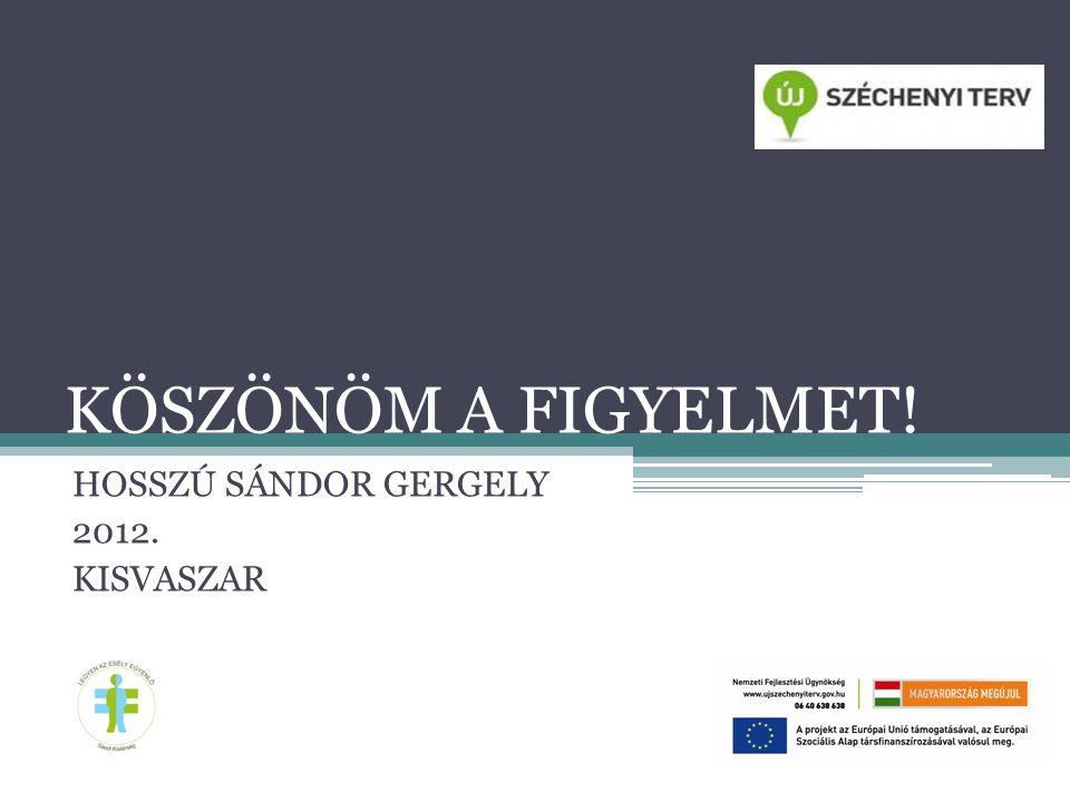 HOSSZÚ SÁNDOR GERGELY 2012. KISVASZAR