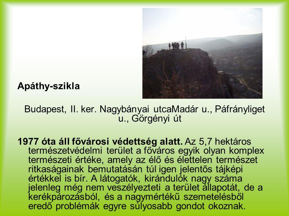 Apáthy-szikla Budapest, II. ker. Nagybányai utcaMadár u., Páfrányliget u., Görgényi út.