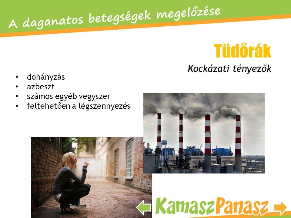Tüdőrák Kockázati tényezők dohányzás azbeszt számos egyéb vegyszer