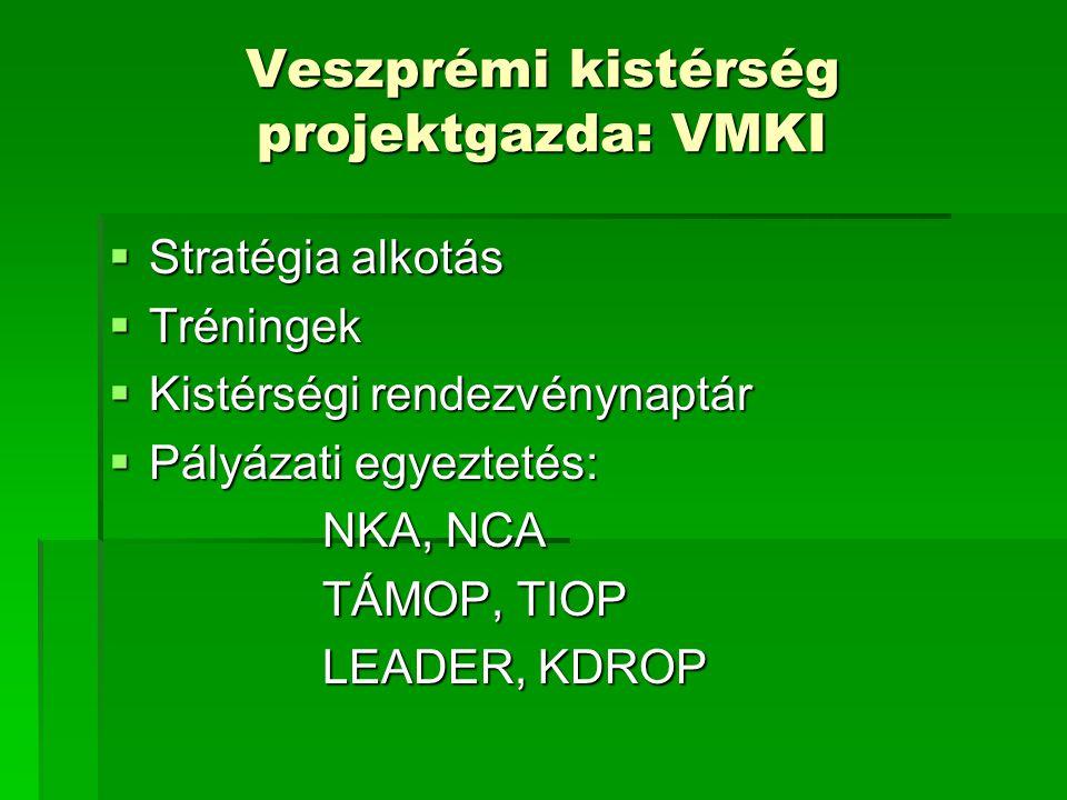 Veszprémi kistérség projektgazda: VMKI
