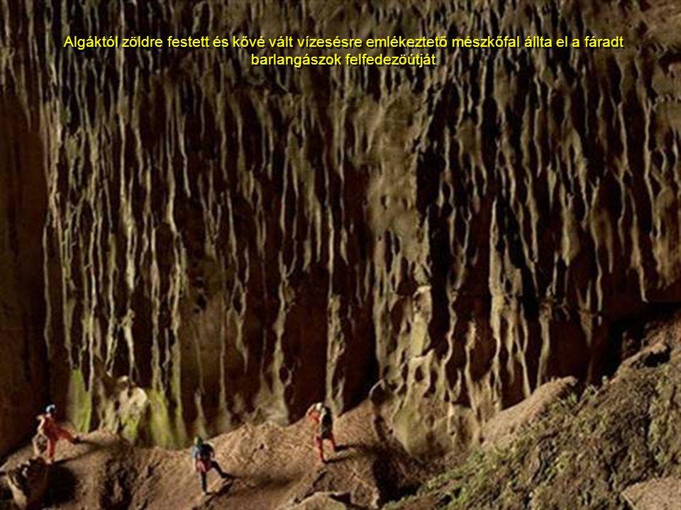 Algáktól zöldre festett és kővé vált vízesésre emlékeztető mészkőfal állta el a fáradt barlangászok felfedezöútját