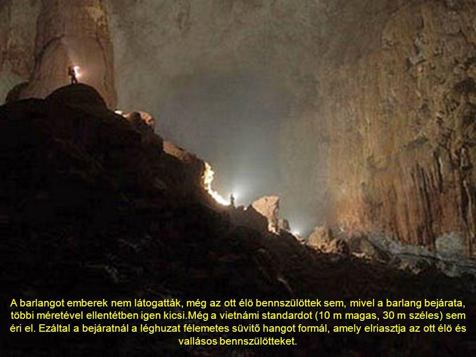 A barlangot emberek nem látogatták, még az ott élö bennszülöttek sem, mivel a barlang bejárata, többi méretével ellentétben igen kicsi.Még a vietnámi standardot (10 m magas, 30 m széles) sem éri el.