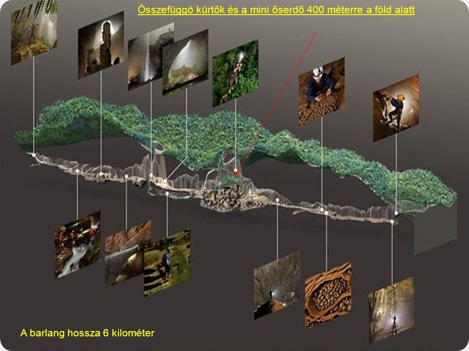 Összefüggö kürtők és a mini őserdő 400 méterre a föld alatt