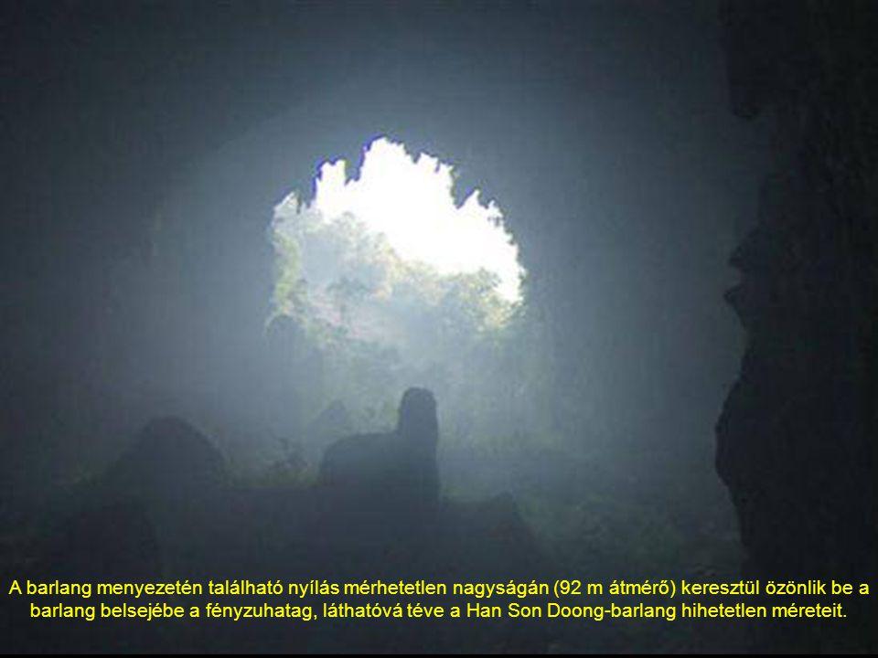 A barlang menyezetén található nyílás mérhetetlen nagyságán (92 m átmérő) keresztül özönlik be a barlang belsejébe a fényzuhatag, láthatóvá téve a Han Son Doong-barlang hihetetlen méreteit.