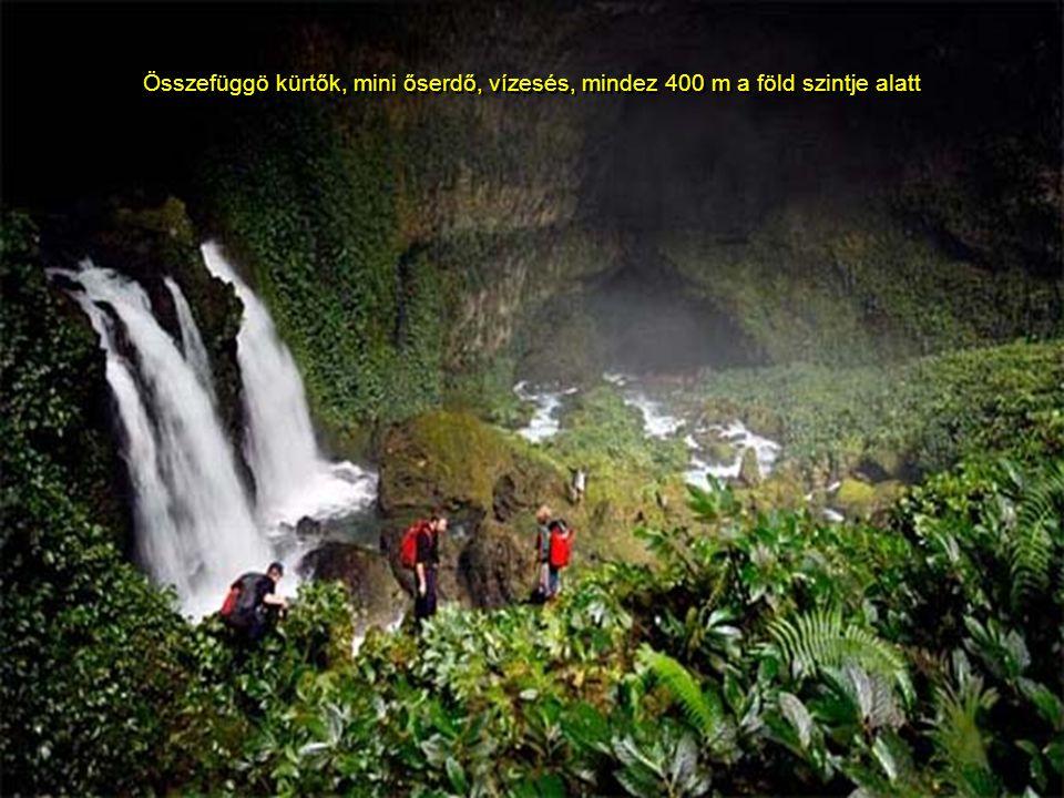 Összefüggö kürtők, mini őserdő, vízesés, mindez 400 m a föld szintje alatt