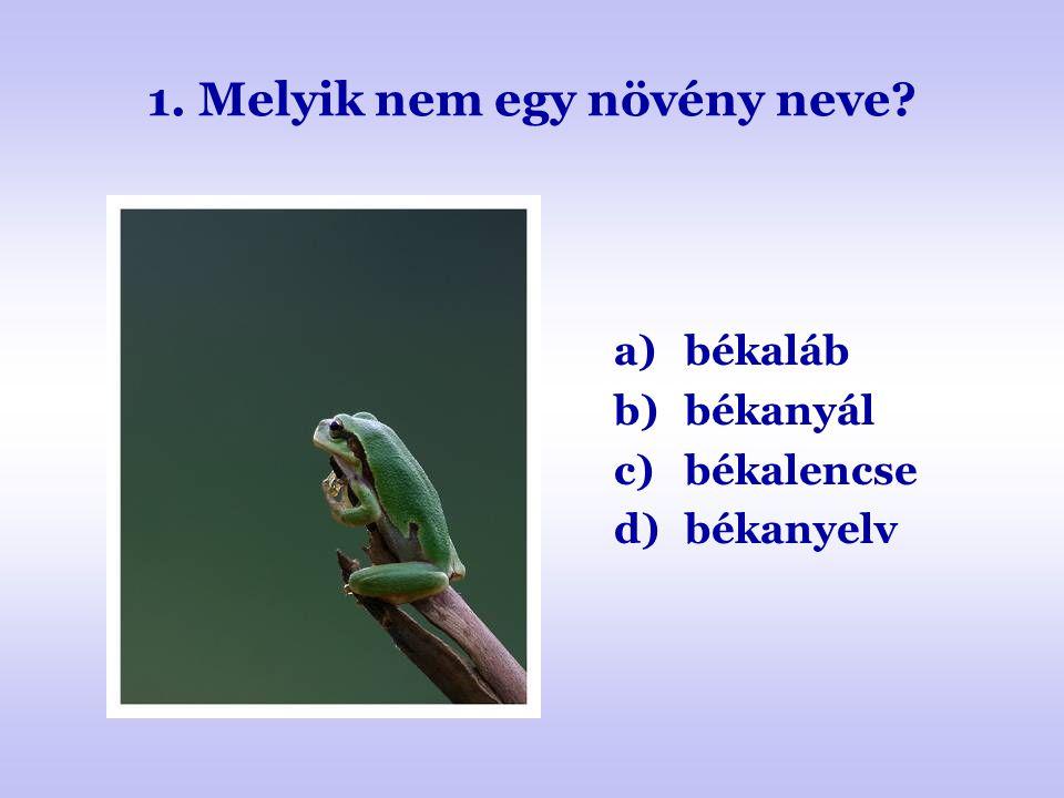 1. Melyik nem egy növény neve