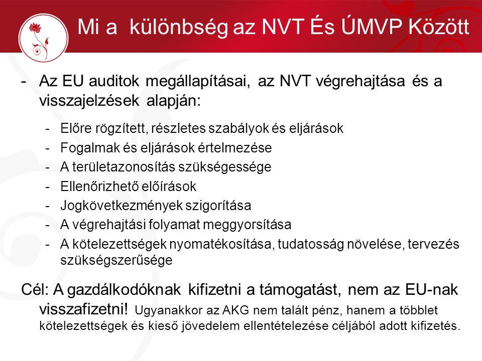 Mi a különbség az NVT És ÚMVP Között