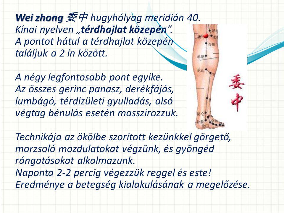 Wei zhong 委中 hugyhólyag meridián 40.