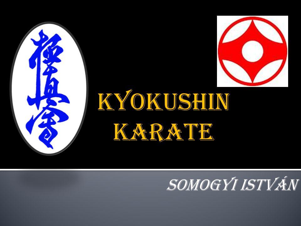 Kyokushin karate Somogyi István