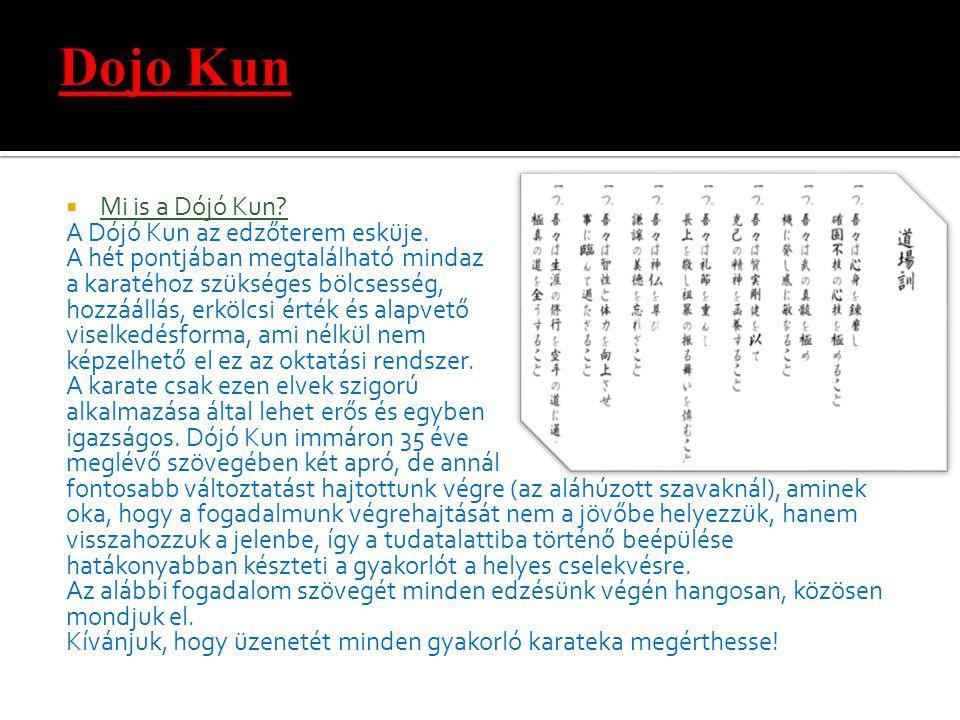 Dojo Kun Mi is a Dójó Kun A Dójó Kun az edzőterem esküje.